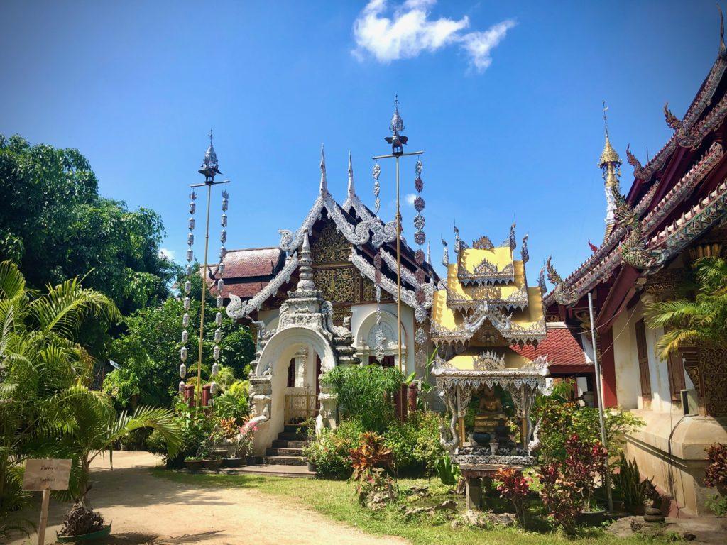 Experience vegan Thailand with Vegans, Baby. For more vegan world tours, visit www.vegansbaby.com